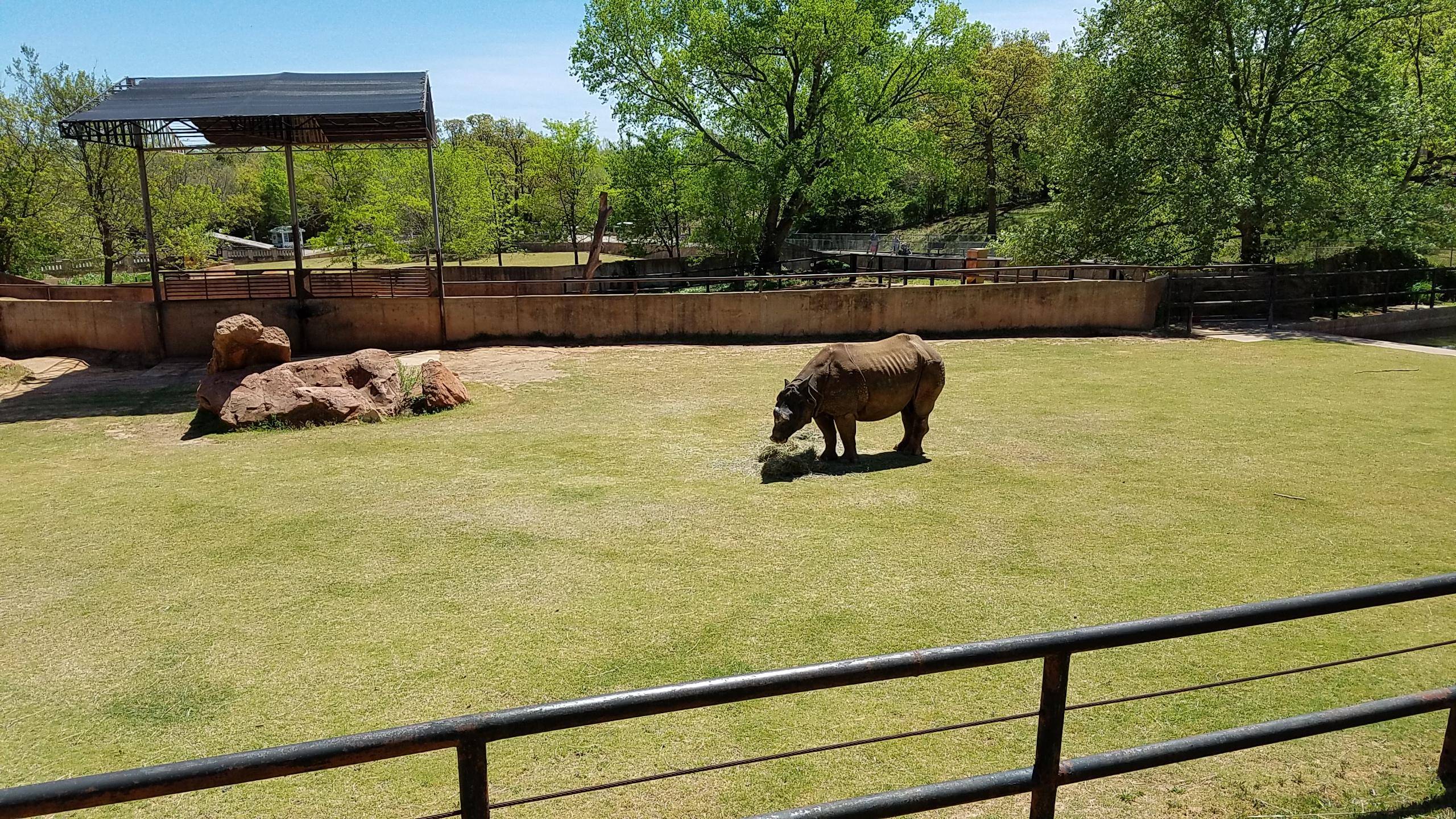 The oklahoma city zoo rv 39 ing with herb kathy Oklahoma city zoo and botanical garden