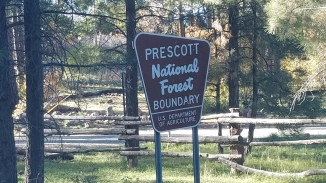 Mingus Mountain is in the Prescott National Forest just west of Jerome, AZ